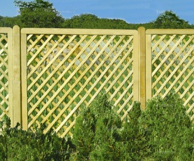 Fence Panel 562 - Planed Timber, 70x70mm Trellis, 4x2 Frame